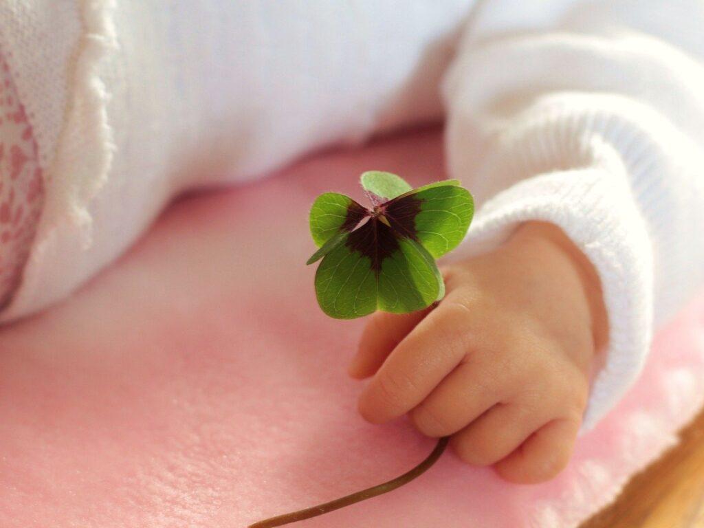 four leaf clover, luck, baby